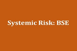 Systemic Risk: A new challenge for risk management. The case of BSE