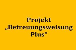 """Evalution des Projekts """"Betreuungsweisung Plus"""""""