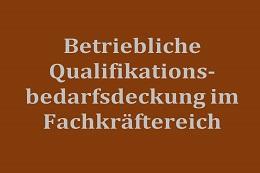 Betriebliche Qualifikationsbedarfsdeckung im Fachkräftebereich wachsender Beschäftigungsfelder PEREK